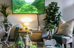 ormas fáciles de transformar tu hogar