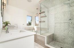agregar color a tu baño con plantas de interior