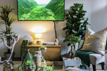 decorar una sala de estar con plantas
