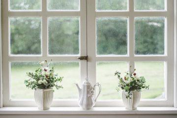 Mantener las ventanas limpias todo el año