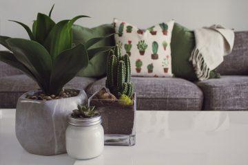 ideas de decoración del hogar para bajos presupuestos