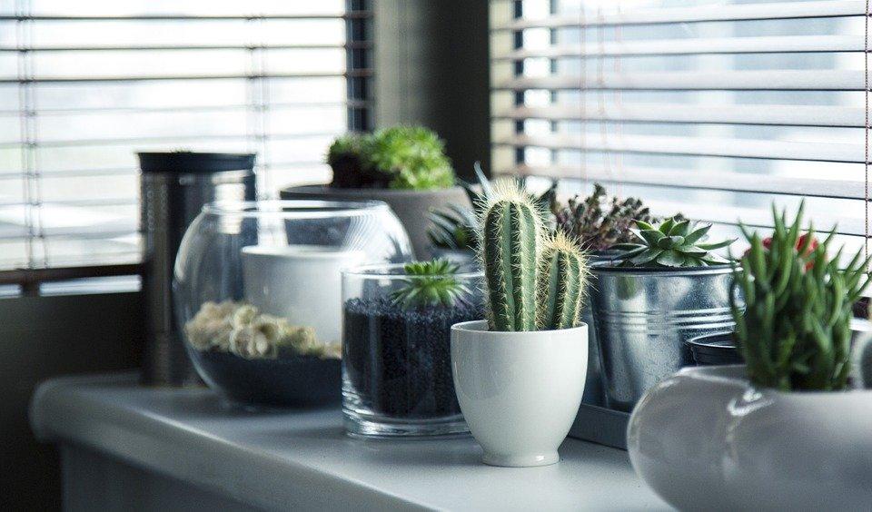 transforma tu hogar con poco dinero